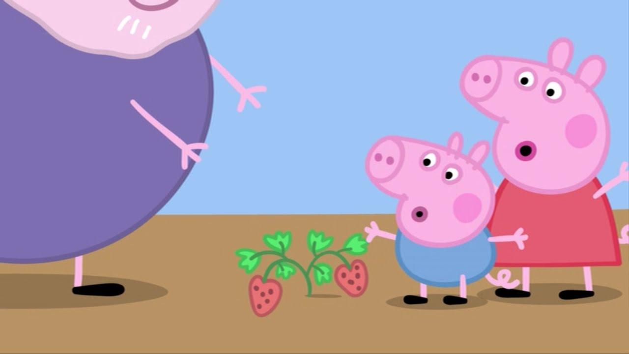 Peppa Pig Capitulo 9 - La hortaliza