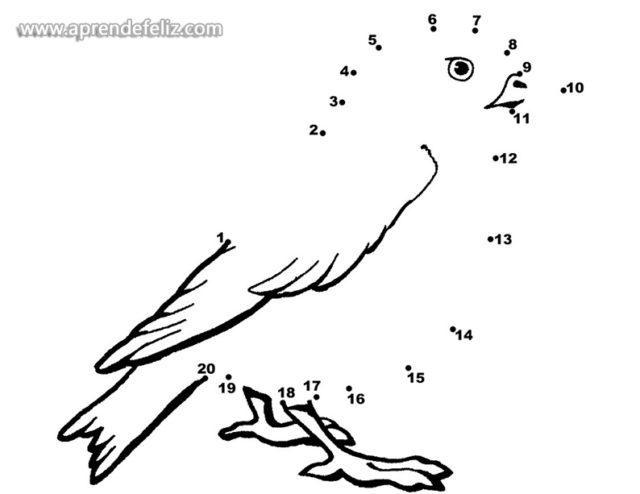 Dibuja pájaros y aves uniendo los puntos numerados