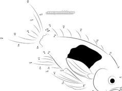 Aprender a dibujar peces uniendo números